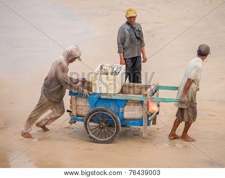 BALI, INDONESIA - NOVEMBER 15, 2014: Fishermen carrying fish in the fishing village of Jimbara , BALI, INDONESIA on NOVEMBER 15, 2014