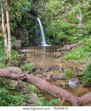 Evergreen Forest Waterfall In Chiang Mai, Thailand