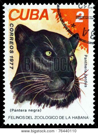 Vintage  Postage Stamp. Wild Big Cats. Black Panther.