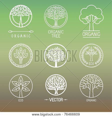 Vector Tree Logos And Badges