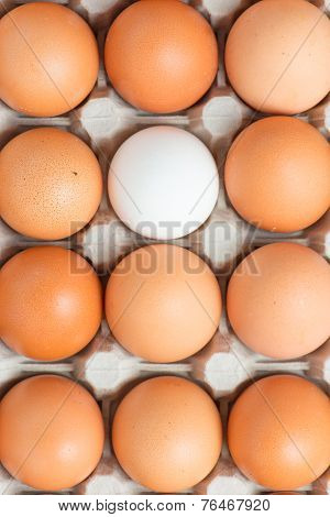 Closeup of eggs in a box from above