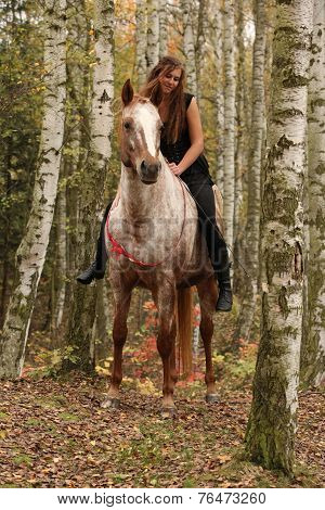 Pretty Young Girl Riding A Horse Without Any Equipment In Autumn Forest