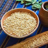 foto of quinoa  - Bolivian popped quinoa cereal in small clay bowl with coca tea on the side photographed with natural light  - JPG