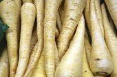 stock photo of parsnips  - A collection of yellow parsnips for a background - JPG