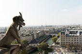 stock photo of gargoyles  - Gargoyle looking at Paris - JPG