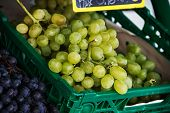 pic of plastic money  - green and blue grapes lies in a green plastic box vine branches photo close - JPG