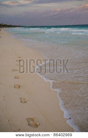 Walking Beaches Of Tulum. Caribbean Paradise,