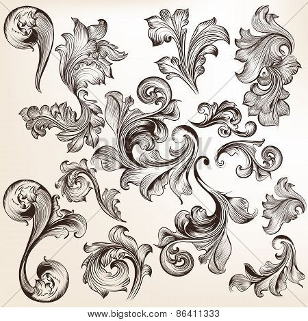 Collection Of Vector Swirls In Vintage Style  For Design