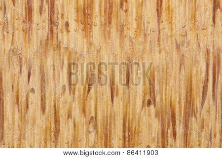 Macro Bamboo Wood Background
