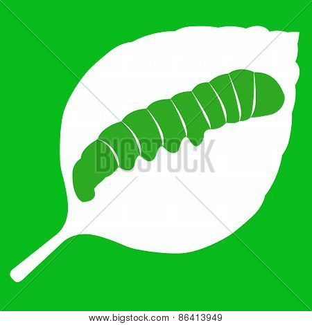 Vector illustration of leaf on green background