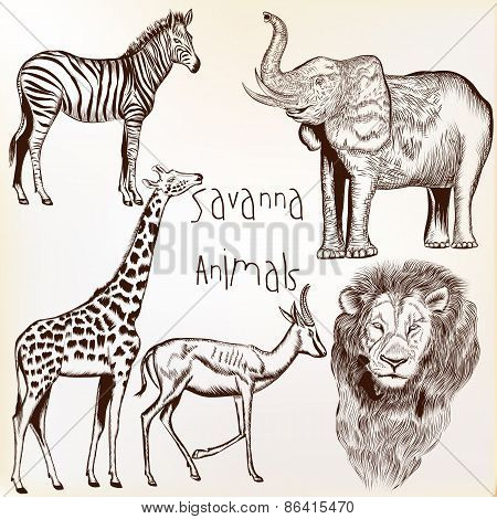 Engraved Savanna Animals Set