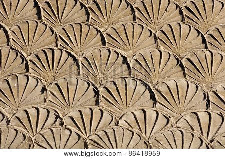 Old Plaster Imitation Shells On Wall