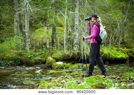 Hiker in forest