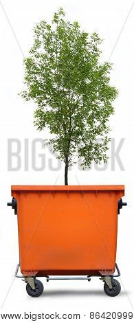 Blank Refuse Bin With Green Ash Tree
