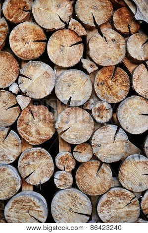 Shot Of A Pile Of Cut Tree Trunks Ideal For Backgrounds And Textures