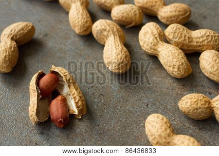 Peanuts in the skin and brushed on a gray background