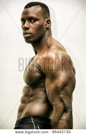 Handsome Black Male Bodybuilder Posing In Studio Shot