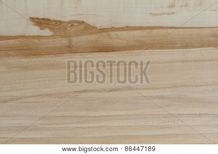 Cut Appletree Wood Background