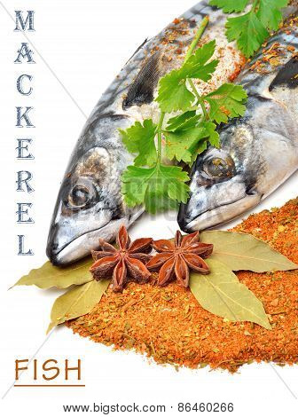 Fresh Mackerel Fish With Parsleyand Spices