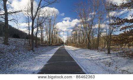 Paved Trail in Morning Light and Shadows lined with Trees