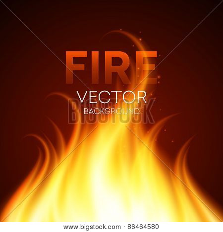 Fire realistic background. Vector illustration