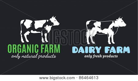 Cow Label Templates for Diary and Meat Products