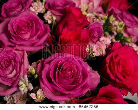 Bouquet Of Beautiful Pink Roses At Closeup