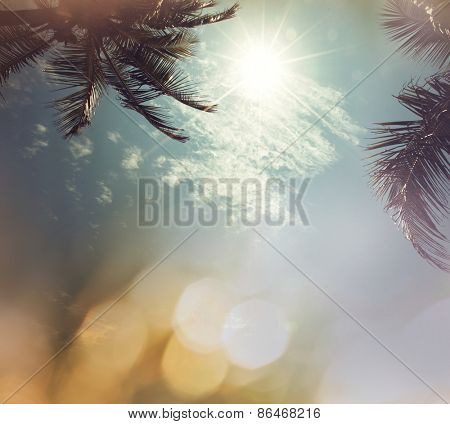 Serenity tropical background