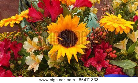 Flowers display vitrine