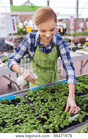people, gardening and profession concept - happy woman or gardener with sprayer and seedling in greenhouse