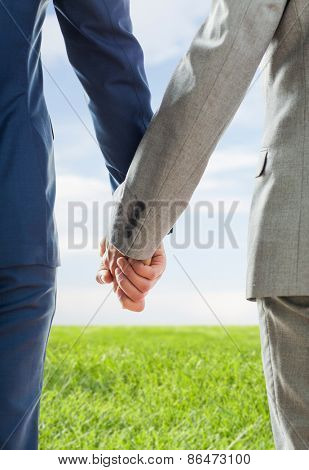 people, homosexuality, same-sex marriage and love concept - close up of happy male gay couple holding hands from back over blue sky and grass background