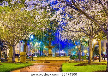 Macon, Georgia, USA downtown with spring cherry blossoms at 3rd Street Park.