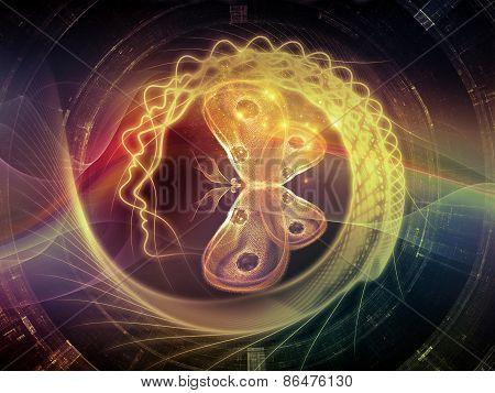 Spirit Of Inner Lines