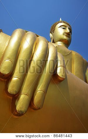 Hand Of Golden Buddha.