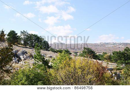Autumn On Ai-petri, Crimea.