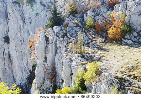 Autumn view Of Ai-petri mountain, Crimea.