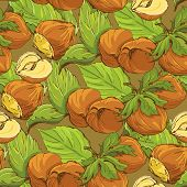 image of hazelnut tree  - Seamless pattern with highly detailed handdrawn hazelnuts on brown background - JPG