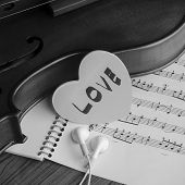 pic of violin  - classic black and white violin music instrument - JPG