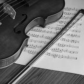 foto of violin  - classic black and white violin music instrument - JPG
