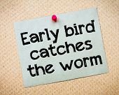 picture of worm  - Early bird catches the worm Message - JPG