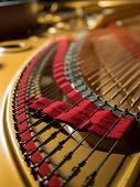 foto of grand piano  - interior of a concert grand piano  - JPG