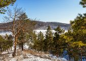 stock photo of siberia  - First days of spring - JPG