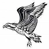 image of eagle  - Tattoo bird - JPG