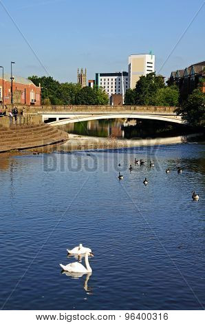 River Derwent, Derby.