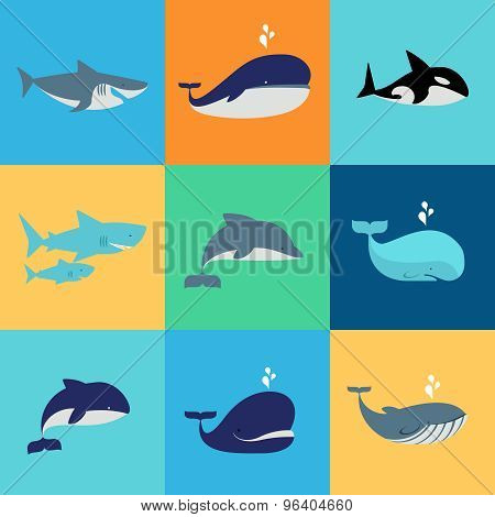 Vector set of whale, dolphin and shark icons