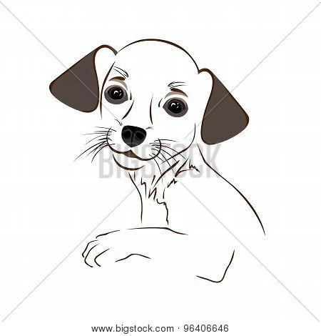 Cartoon cute outline dog