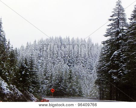 Orange sign in the snow