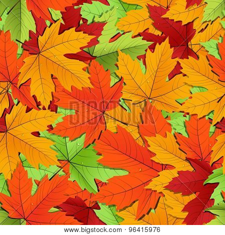 Maple leaves of different colors seamless background. Raster version