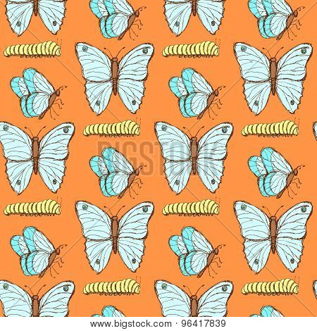 Sketch Butterfly And Caterpillar In Vintage Style