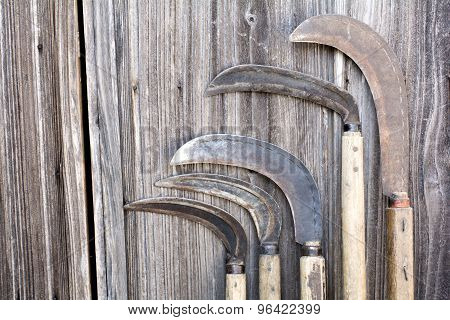 Lined long sickles